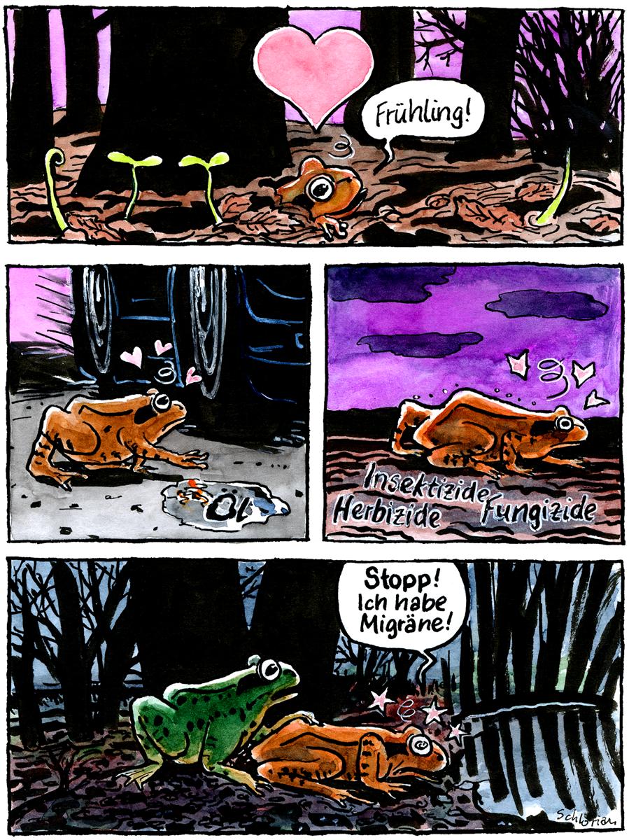 Laichwanderung eines Froschen