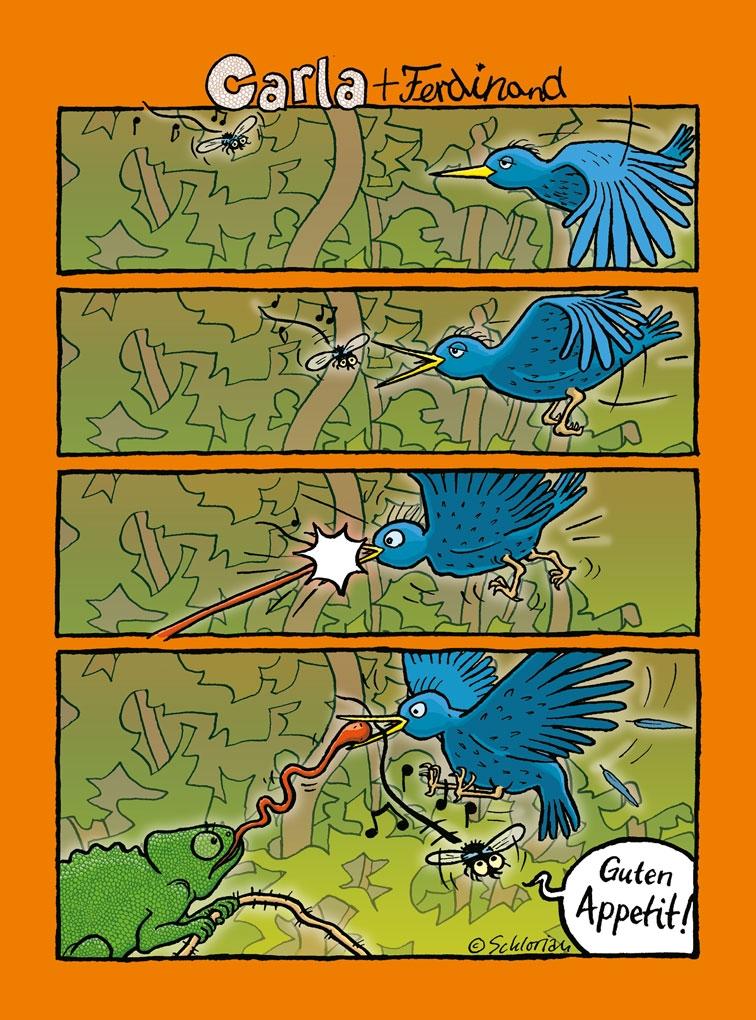 Carla und der Vogel