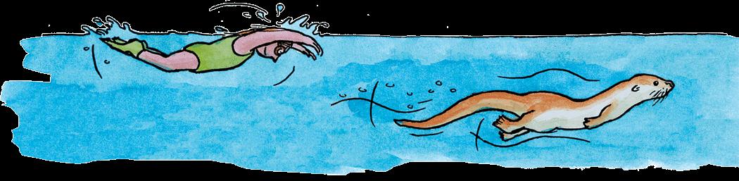 Mensch – Fischotter Delfin