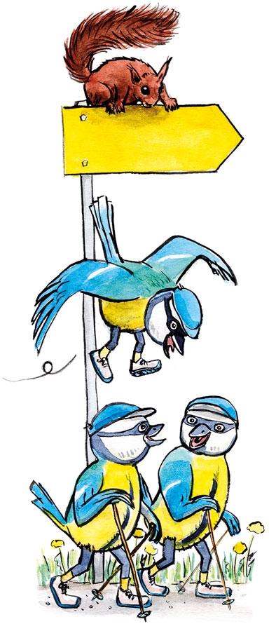Wandervögel plaudernd