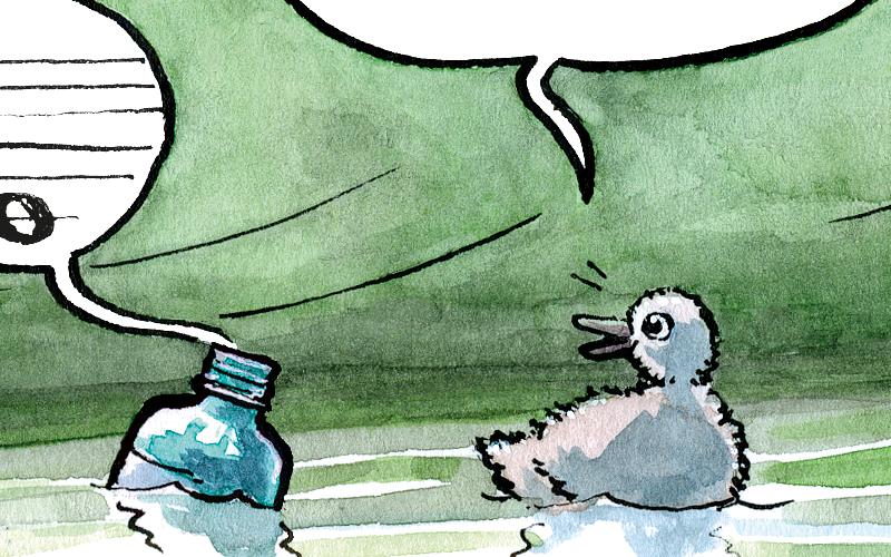 kleiner Schwan und Pet-Flasche