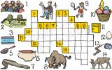 Bilder-Kreuzworträtsel