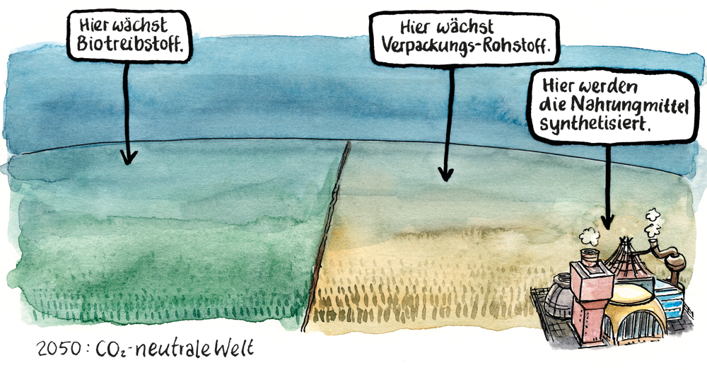 2050: Die Welt CO2-neutral