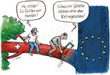 Schweizer Gesetze