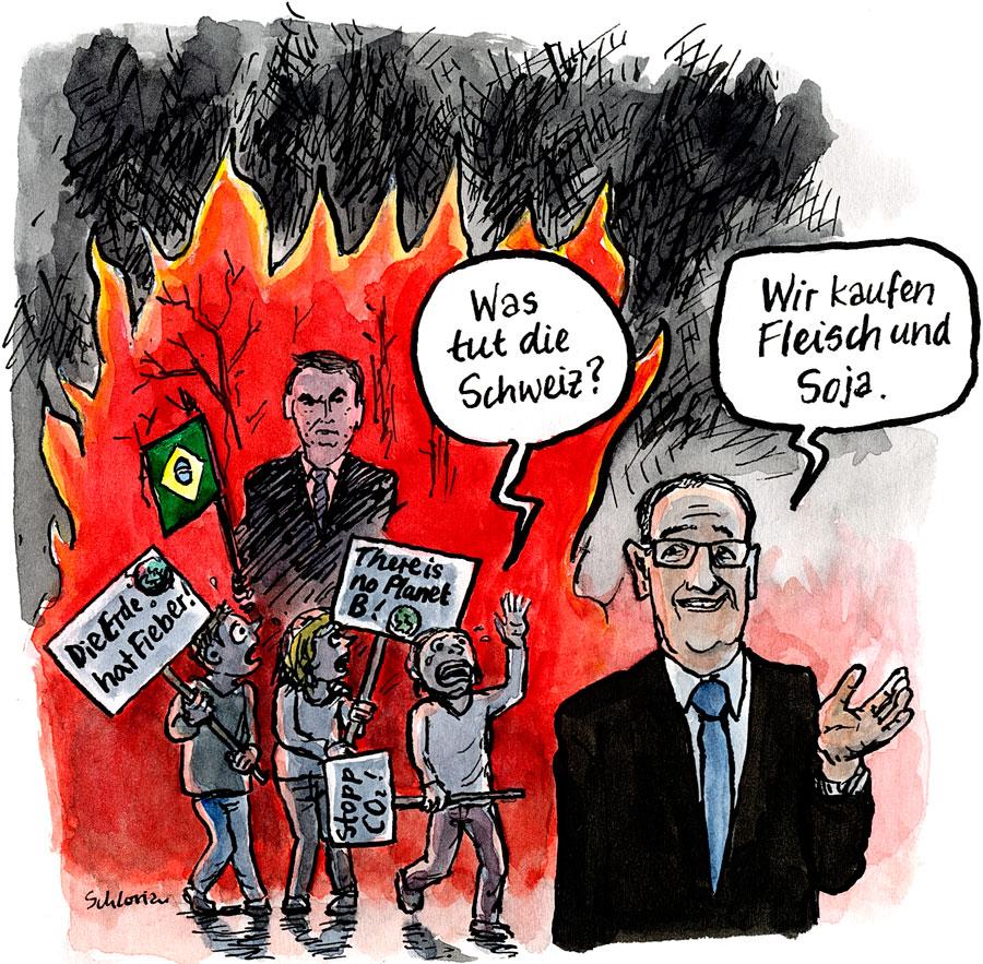 Bundesrat Parmelin reagiert auf die brennenden Regenwälder