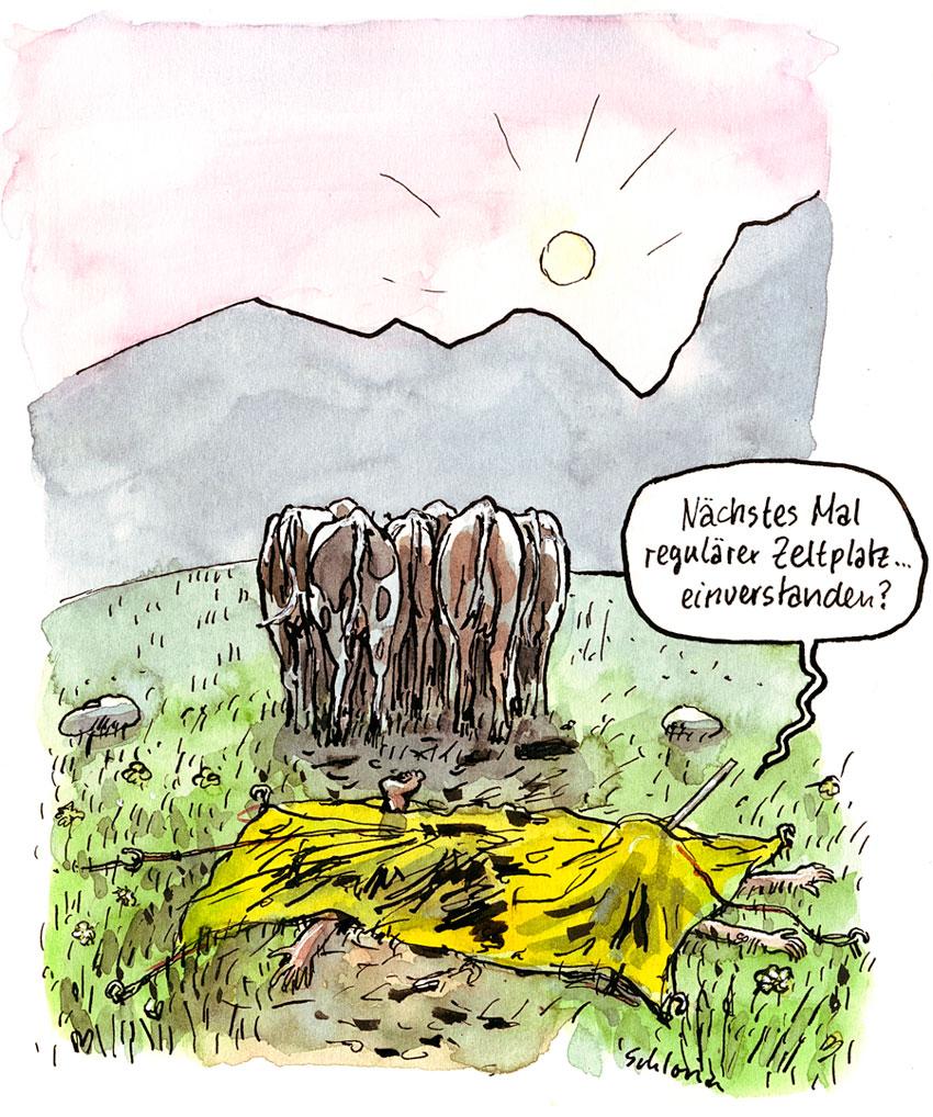 Cartoon Zelten auf Kuhweide
